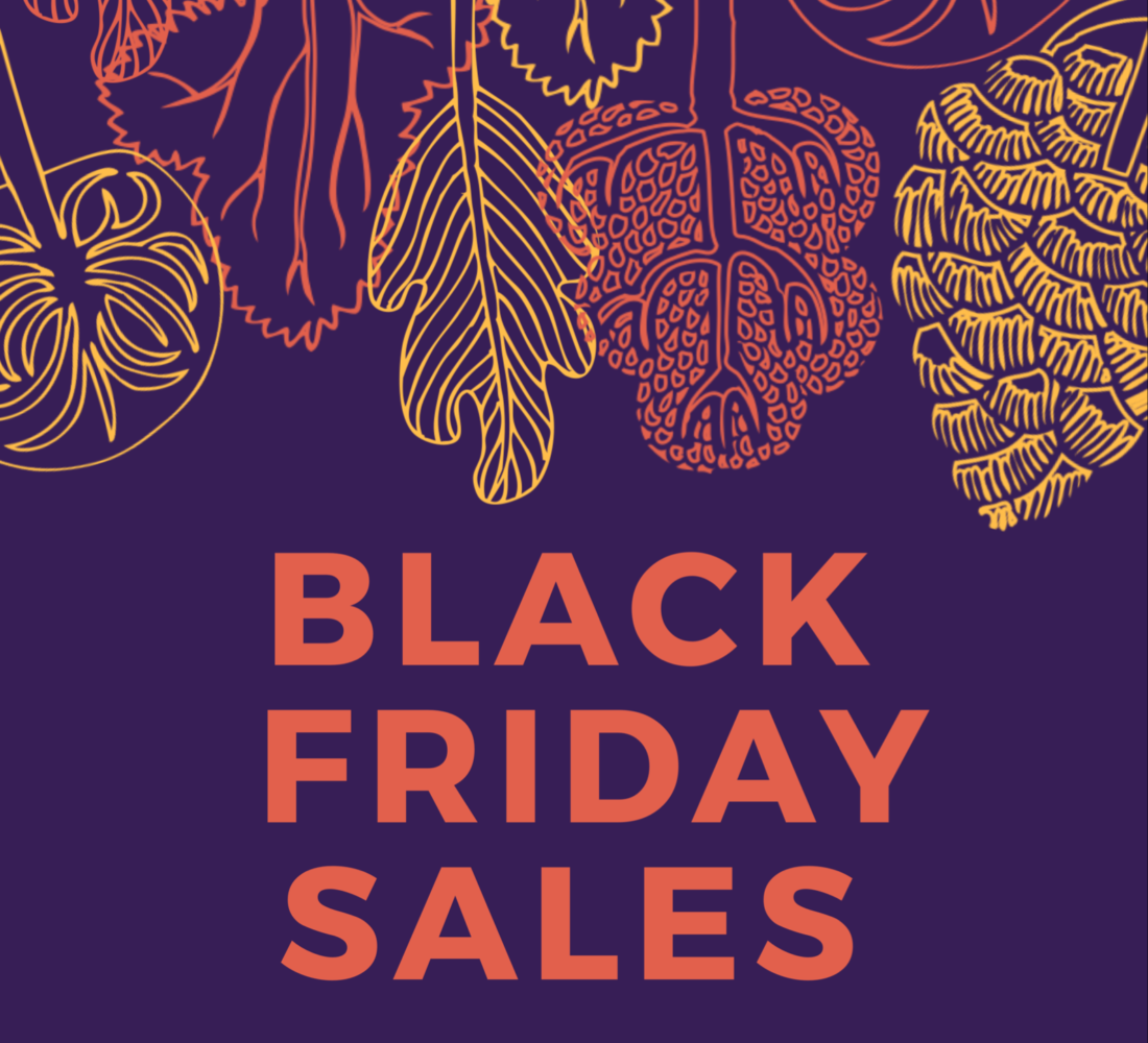 Black Friday Sales & Shopping Guide